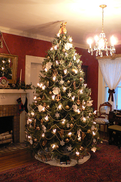 Octagon House Christmas - Parlor